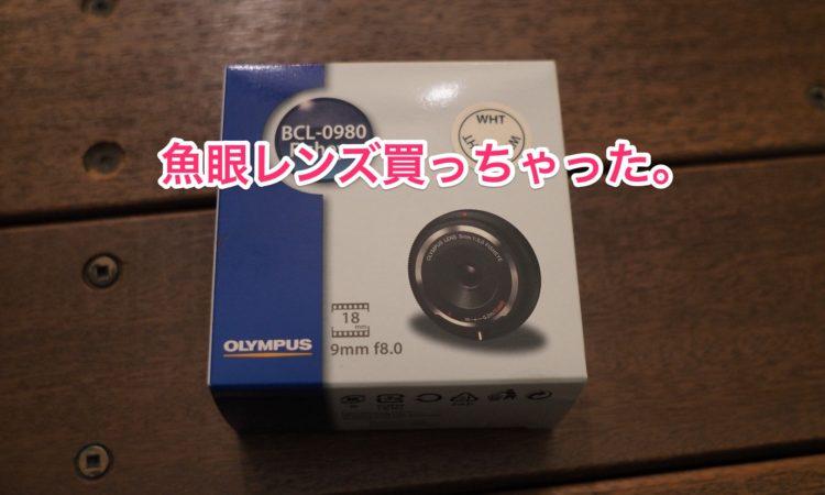 【魚眼レンズ】BCL-0980を買いました。