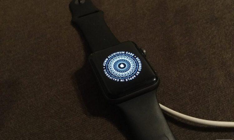 やっとApple Watch Series 3デビューしました!