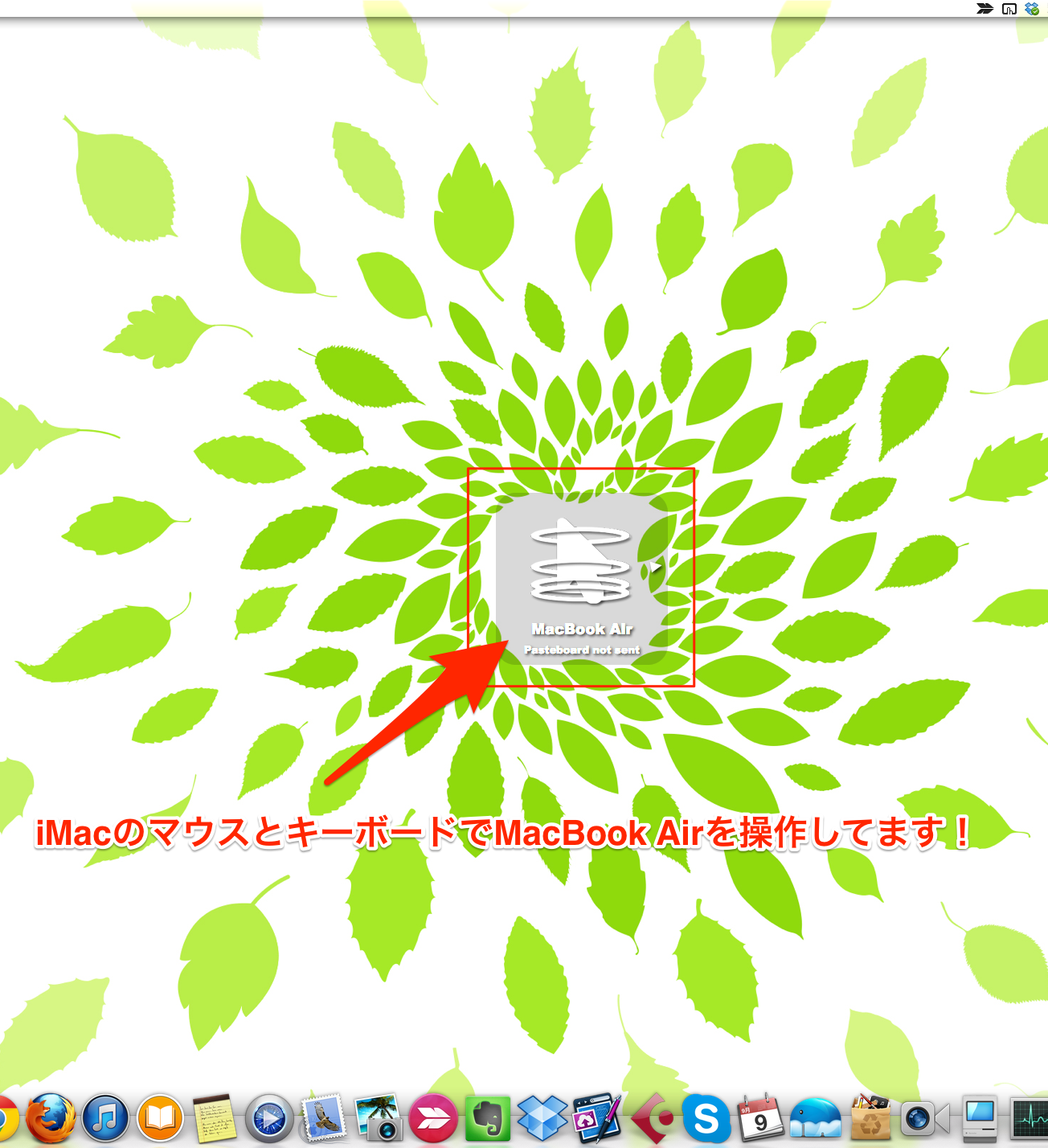 IMG_7972.PNG